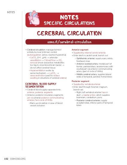 NOTES NOTES  SPECIFIC CIRCULATIONS  CEREBRAL CIRCULATION osms.it/cerebral-circulation ▪ Cerebral circulation: managed almost entirely by local (intrinsic) control (autoregulation; active, reactive hyperemia) ▫ ↑ pCO2 (↑H+, ↓pH) → arteriolar vasodilation → ↑ blood flow → CO2 removal (most vasoactive metabolites too big to cross blood-brain barrier → do not affect cerebral tissue ▫ Hyperventilation works by same mechanism → ↓ pCO2 → vasoconstriction (used to reduce swelling in situations of cerebral edema)  CEREBRAL BLOOD SUPPLY SEGMENTATION  ▪ Cerebral blood supply separated into anterior, posterior segments ▪ Anterior, posterior circulatory segments join via arterial posterior communicating arteries, form circle of Willis ▫ Back-up circulation in case of blood vessel occlusion  152 OSMOSIS.ORG  Anterior segment ▪ Supplied by internal carotid arteries ▪ Enter skull in carotid canal, branch out ▫ Ophthalmic arteries: supply eyes, orbits, forehead, nose ▫ Anterior cerebral artery: medial part of frontal, parietal lobes; anastomoses with counterpart via anterior communicating artery (part of circle of Willis) ▫ Middle cerebral artery: supplies lateral sides of temporal, parietal, frontal lobes Posterior segment ▪ Supplied by vertebral arteries ▪ Enter skull through foramen magnum, branch out ▫ Right, left vertebral arteries fuse in skull → basilar artery which supplies brainstem, cerebellum, pons ▫ Posterior cerebral arteries: supply occipital lobes, inferior parts of temporal lobes