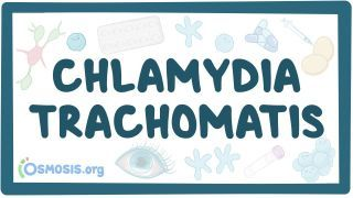 Video poster for Chlamydia trachomatis