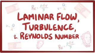 Video poster for Laminar flow and Reynolds number