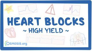 Video poster for High Yield: Heart blocks