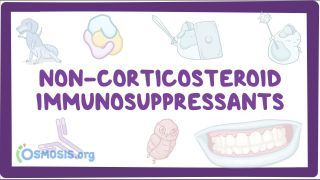 Video poster for Non-corticosteroid immunosuppressants and immunotherapies