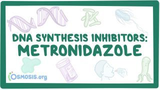 Video poster for DNA synthesis inhibitors: Metronidazole