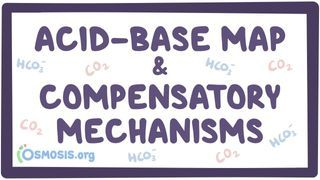 Video poster for Acid-base map and compensatory mechanisms