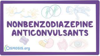Video poster for Nonbenzodiazepine anticonvulsants