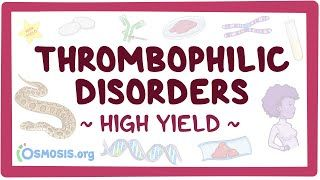 Video poster for High Yield: Thrombophilic disorders